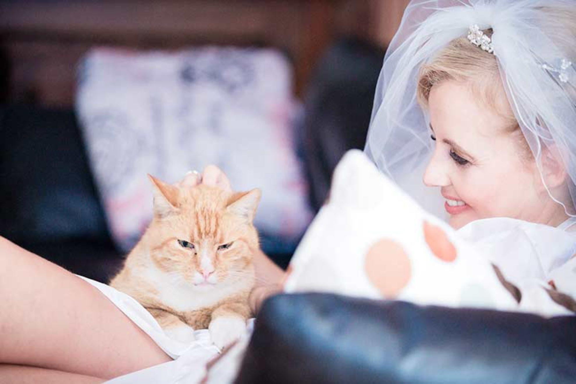 Nicole und Steffen – Hochzeit Dämeritzsee Hotel