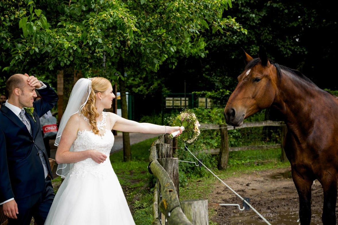 - Hochzeit_Standesamt_neukoelln__Susi_Sven-198